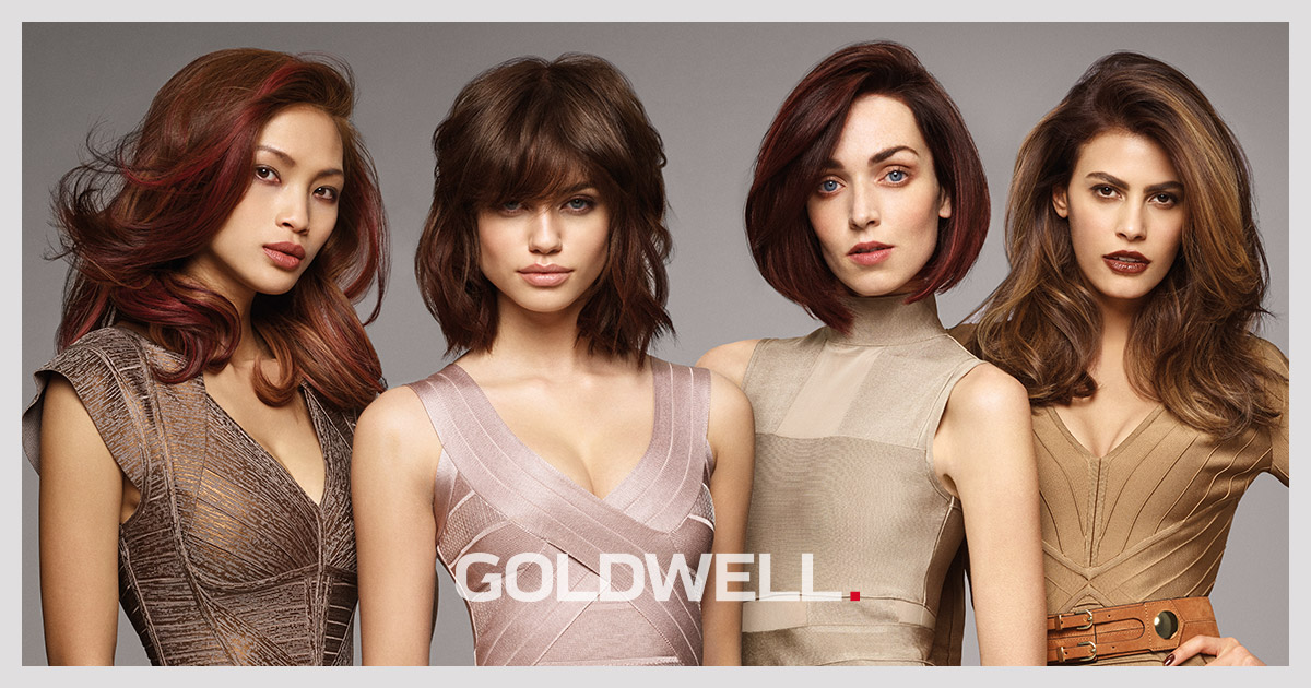 THE ICONIC BRUNETTE COLLECTION