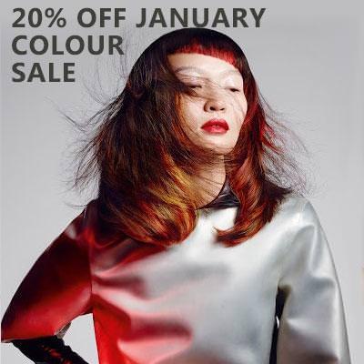 20-off-january-colour-sale